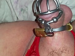 Sissy Cuckold In Chastity Milking Hes Little Clit